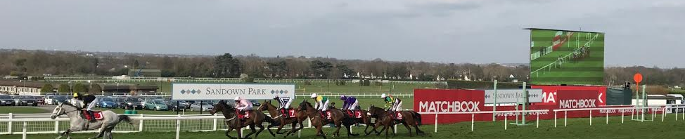 Matchbook Betting Exchange Sandown Park