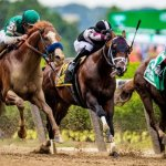 simple guide to betting on horse racing