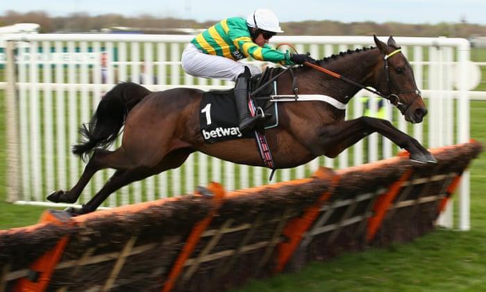 Champion hurdle betting odds betting tips pro