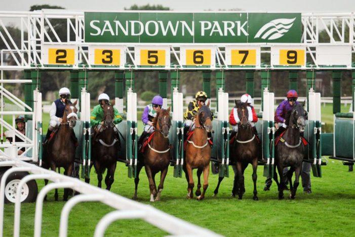 Sandown Horse racing