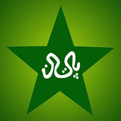 Cricket Pakistan logo