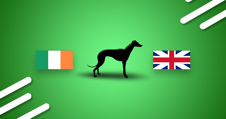Irish coursing derby betting app france switzerland betting odds